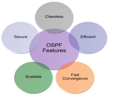 OSPF Features
