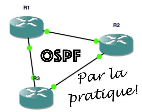 OSPF par la pratique